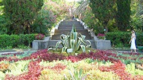 Ботанический парк Дендрарий 4